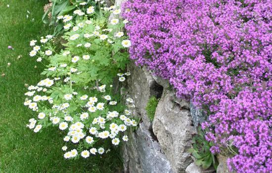 каменные стены в саду
