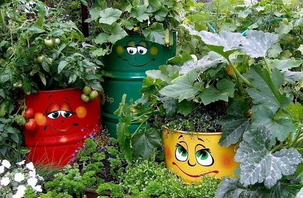 Огород может быть декоративным.