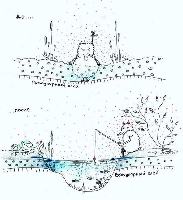Рисунок 1. Понижение уровня грунтовых вод на участке посредством создания водоема