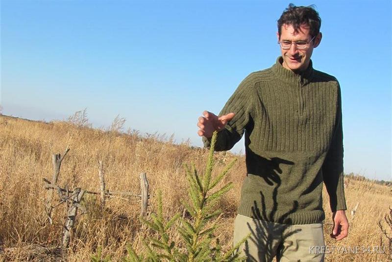 lesosadovoe-orehovodstvo